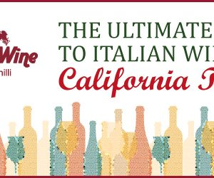 Doctor Wine Ultimate Guide to Italian Wine California Tour HEADER
